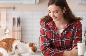 3 причины, по которым одинокие женщины живут с кошками